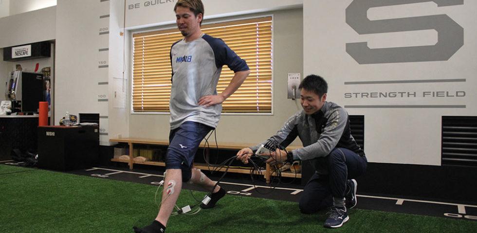下腿トレーニング時の生体電位信号の分析
